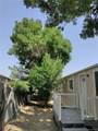 1227 Lilac Drive - Photo 28