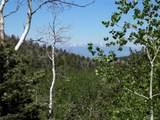 369 Lone Eagle Road - Photo 6