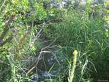 18259 Kimball Creek Road - Photo 18