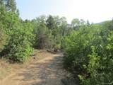 18259 Kimball Creek Road - Photo 5