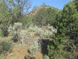 18259 Kimball Creek Road - Photo 8