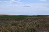 400 County Road 157 - Photo 24