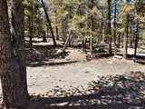 Middle Fork Vista - Photo 14