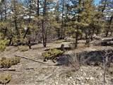 Middle Fork Vista - Photo 15
