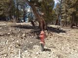 Middle Fork Vista - Photo 2
