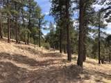 Spring Canyon Ranch - Photo 6