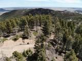 13633 Spruce Creek Circle - Photo 10