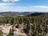 13633 Spruce Creek Circle - Photo 18