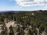 13633 Spruce Creek Circle - Photo 23