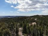 13633 Spruce Creek Circle - Photo 6