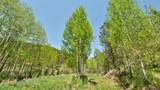 14482 Elk Creek Road - Photo 21