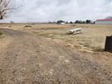 12434 County Road 1 - Photo 5