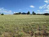 3038 Comanche Drive - Photo 17