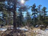 350 Ptarmigan Trail - Photo 12