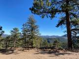 350 Ptarmigan Trail - Photo 16