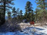 350 Ptarmigan Trail - Photo 6