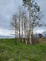 2346 Sigler Drive - Photo 2