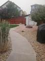 11531 Grape Street - Photo 27