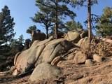 14037 Boulder Lane - Photo 10