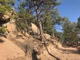 14037 Boulder Lane - Photo 13