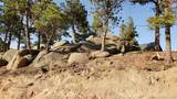14037 Boulder Lane - Photo 15