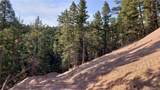 14037 Boulder Lane - Photo 31