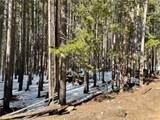 00 Elk Trail - Photo 5