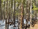 00 Elk Trail - Photo 6