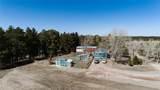 34027 Pine Ridge Circle - Photo 40