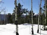 0 Bald Mountain Drive - Photo 16