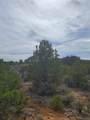 1653 Montezuma Road - Photo 20