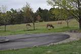 21224 Otero Parkway - Photo 8