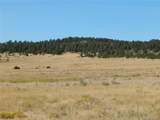001 County Road 102 - Photo 19