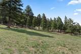 15367 Sierra Pines Lane - Photo 5