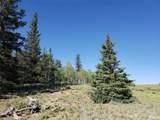 1163 Apache Trail - Photo 12