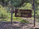 33000 Retrievers Trail - Photo 1