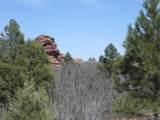 6447 Thunderbird Road - Photo 19