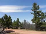 6447 Thunderbird Road - Photo 5