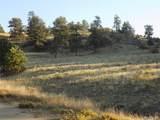 603 Goldenburg Canyon Road - Photo 11
