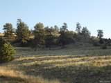 603 Goldenburg Canyon Road - Photo 13