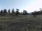 603 Goldenburg Canyon Road - Photo 3