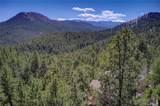 31481 Upper Bear Creek Road - Photo 29