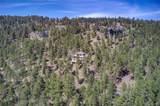 31481 Upper Bear Creek Road - Photo 36