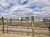 24925 County Road 89 - Photo 9