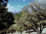 18130 Alta Vista Drive - Photo 28