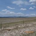 Salt Ranch Trail - Photo 15