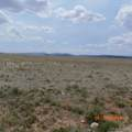 Salt Ranch Trail - Photo 32