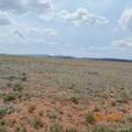 Salt Ranch Trail - Photo 35