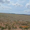 Salt Ranch Trail - Photo 37