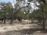 Pinion Trail - Photo 3